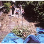Walk_ca1994_Cleaning_LisaC_7_s